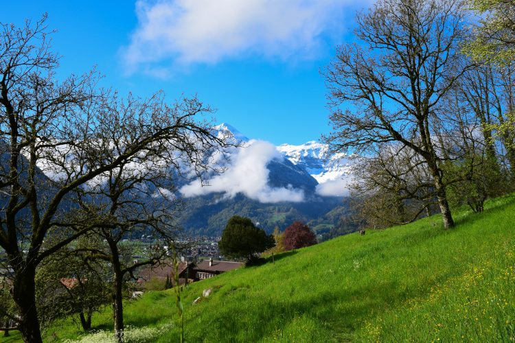 Goldswil, Switzerland near Interlaken the resort town locked between lakes | Muscle and Manna