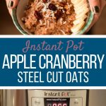 apple cranberry steel cut oats