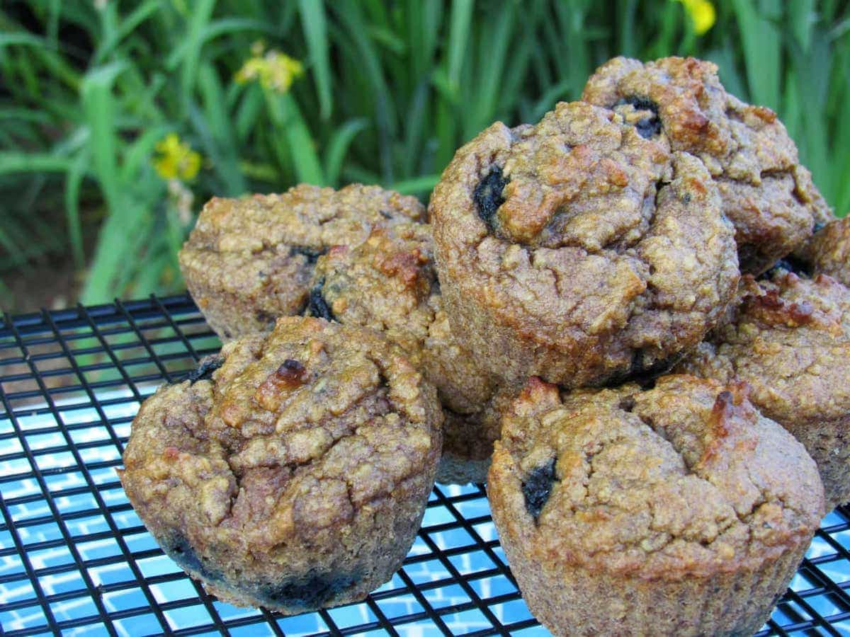 gluten free blueberry muffins for baby