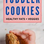 healthy toddler cookie