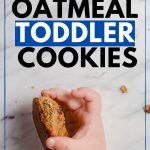 healthy toddler cookies with no sugar