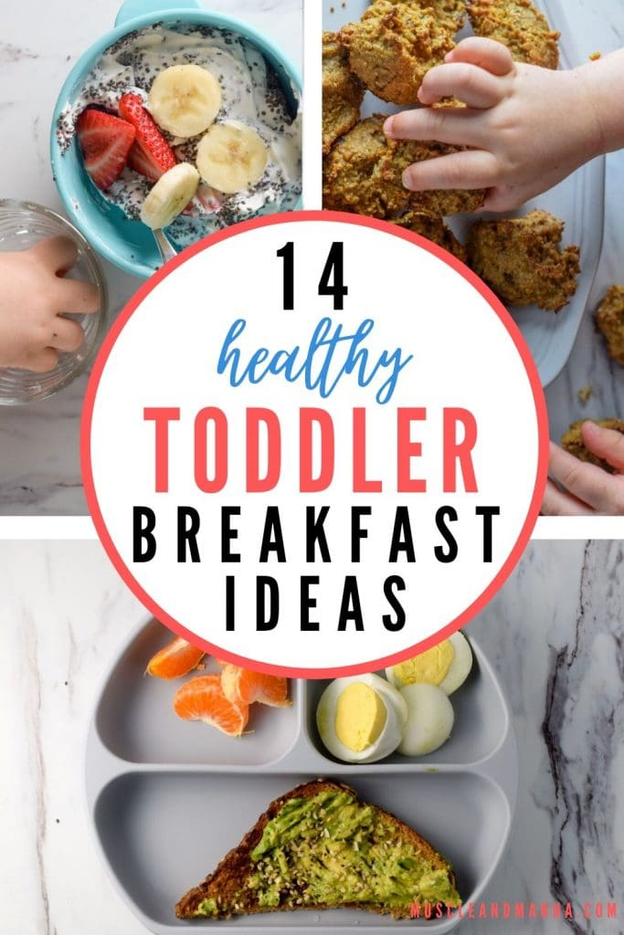 "text reads ""healthy toddler breakfast ideas"""