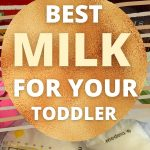 """text reads """"best milk for your toddler"""" with photo of various types of milk"""