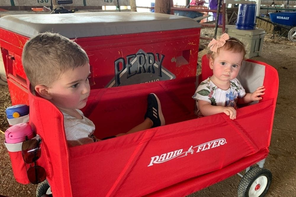 1 year old and toddler shown in a foldable wagon